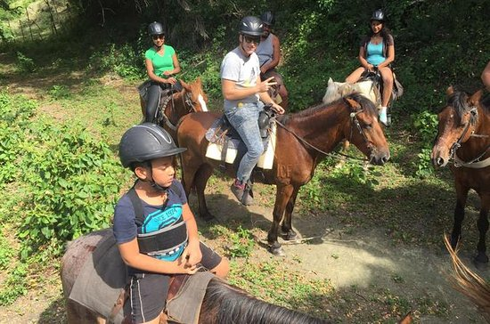 Amber Cove Excursion: Horseback Ride...