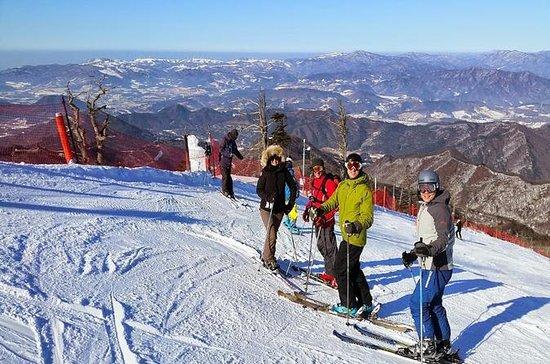Schnee oder Ski Tagesausflug nach...