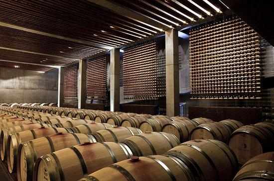 リスボンのワインラバーズプライベートツアー