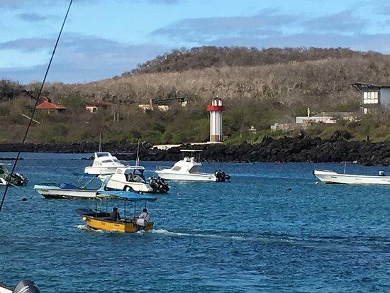 Puerto Baquerizo Moreno, Ecuador: Mate Mio -Sea lion neighbors, harbor views, quiet accommodations