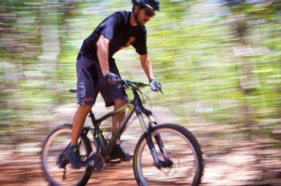 Bike Ride on Rincon de la Vieja