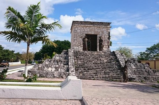 Private Tour: 5-Hour Cozumel...