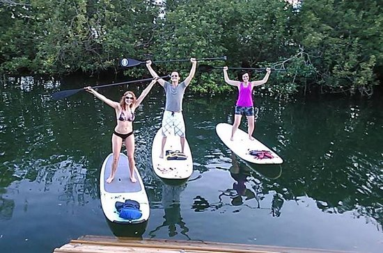 All Day Standup Paddleboard Udlejning