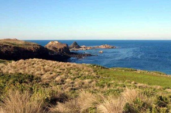 Phillip Island Tour Inklusive Cape...