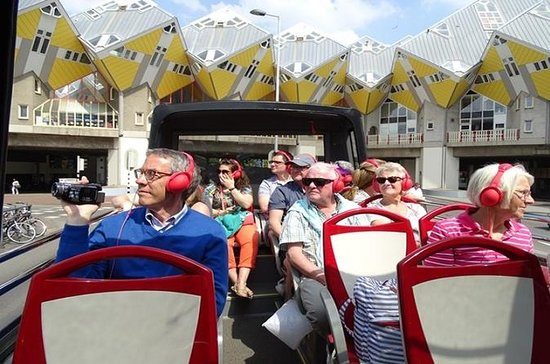 Sightseeing Bus Tour of Rotterdam