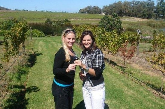 Half-Day Guided Private Wine Tour...