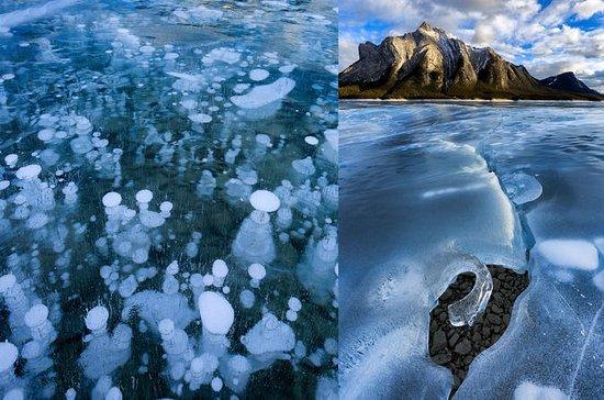 Abraham Lake Ice Bubbles Winter...