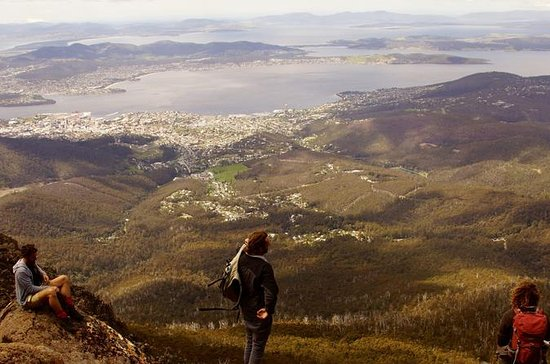 Hobart Hike: Mt Wellington Summit to Cascade Brewery Walk Including...