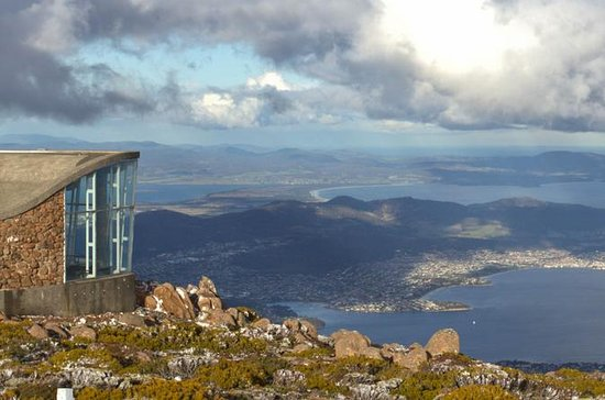 Half-Day Mt Wellington Summit Tour ...