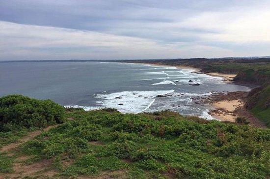Half Day Phillip Island Woolamai ...