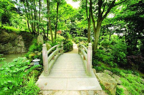 Lafcadio Hearn Japanese Gardens...