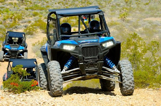 Las Vegas Off-Road RZR tour with Lunch at the Historic Pioneer Saloon: RZR Desert Adventure with Lunch at the Historic Pioneer Saloon