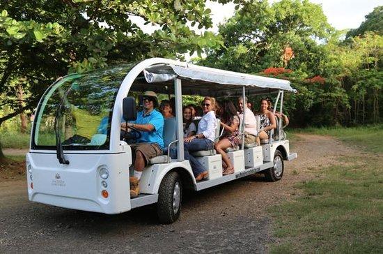 Excursión por la Hacienda Campo Rico...
