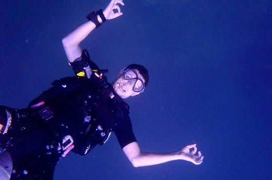 Discover Scuba Diving Day Trip Around
