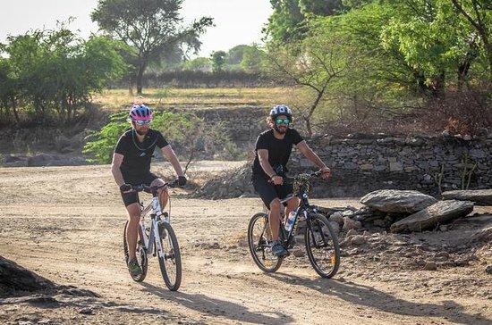 Viagem de um dia de bicicleta a Naila...