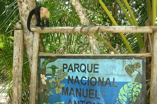 Guided Tour of Manuel Antonio...
