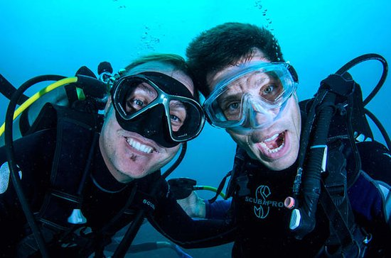 PADI Découvrez la plongée sous-marine...
