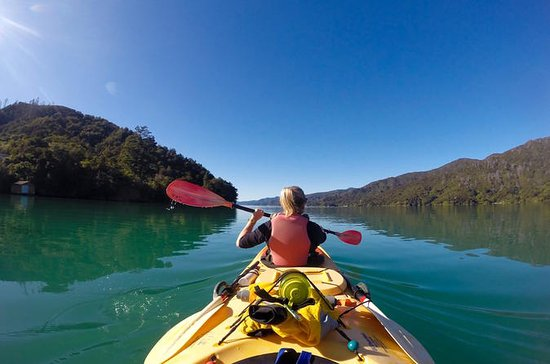 Full-Day Guided Sea Kayaking Trip from Anakiwa