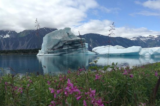 30 minutters Glacier Expedition...