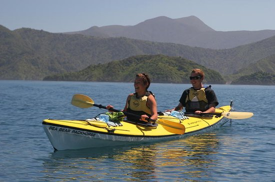 Half-Day Guided Sea Kayaking Tour...