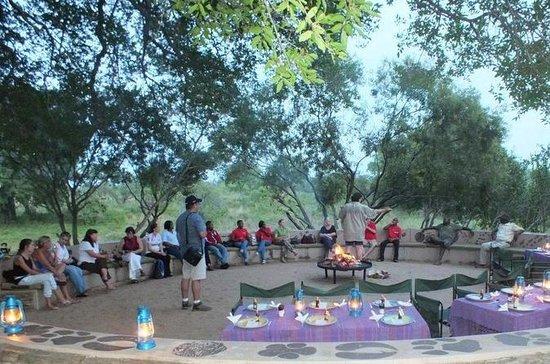 Kruger Park Sunset Safari Com Jantar...