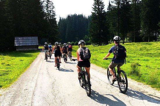 ブレッドのボヒン湖:自転車ツアー