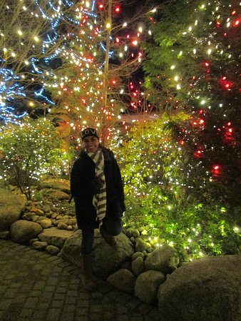 North Vancouver, Canadá: amazing pre Christmas in this park