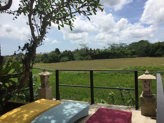Balam Bali Villa : photo1.jpg