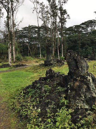 Pahoa, Hawaje: photo0.jpg