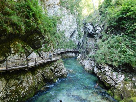 文特加峡谷(Soteska Vintgar)