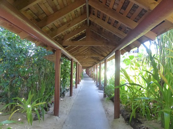 The Rarotongan Beach Resort & Spa: about 1/3 of walkway from reception to beachfront unit rooms