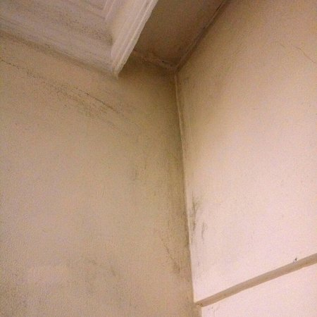 Hotel The Royal Plaza: Dirty walls in the room