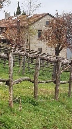 Palazzuolo Sul Senio, Italia: IMG_20161031_073103_large.jpg