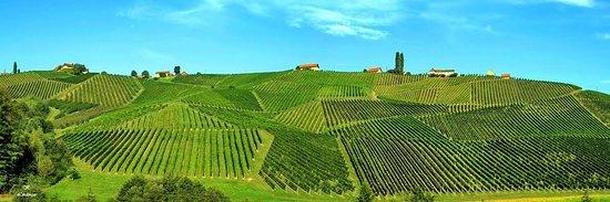Gamlitz, Austria: Brennerei Franz Tinnauer