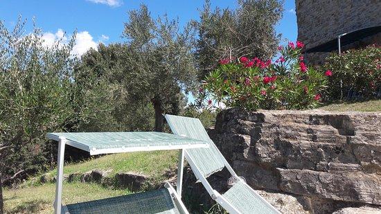 Monte Santa Maria Tiberina, Italia: Foto Torre di Celle