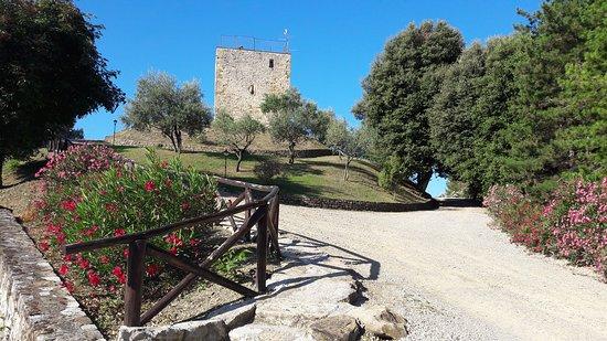 Monte Santa Maria Tiberina, Italien: Foto Torre di Celle