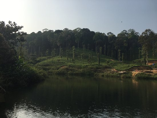 Devala, India: Wild Planet Jungle Resort