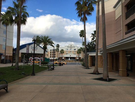 SpringHill Suites Orlando Lake Buena Vista in Marriott Village: photo0.jpg