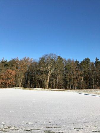 Göhren-Lebbin, Deutschland: photo0.jpg