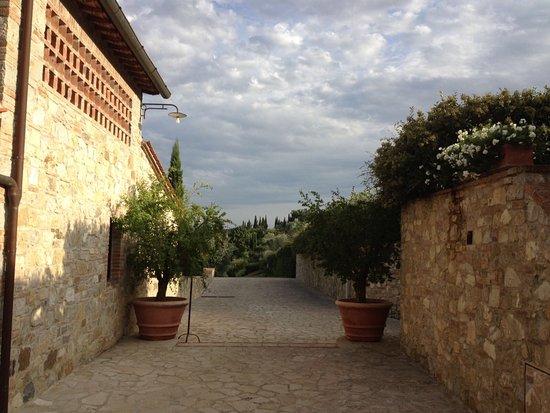 Pianella, Italy: Niekoľkokrát navštívený hotel kde je všetko na 5*, jedlo, relax,prostredie,služby a parkovanie s
