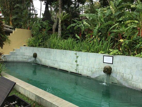Lodtunduh, Indonesia: photo2.jpg