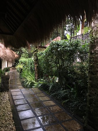 Nandini Bali Jungle Resort & Spa: photo3.jpg