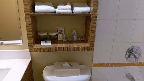 Comfort Inn Downtown: Bathroom with adequate amenities
