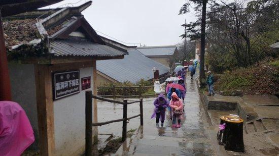 Emeishan, China: long way to climb up