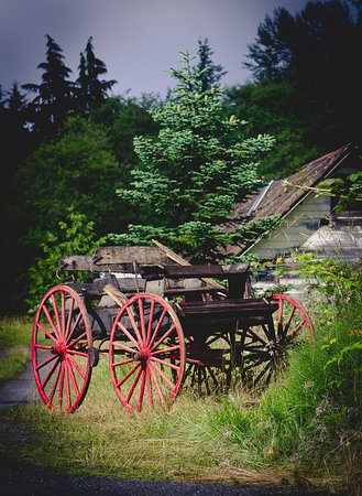 Mineral, WA: Very cool old wagon 100 years old on site