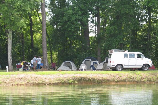 Metter, GA: We have peaceful tent sites