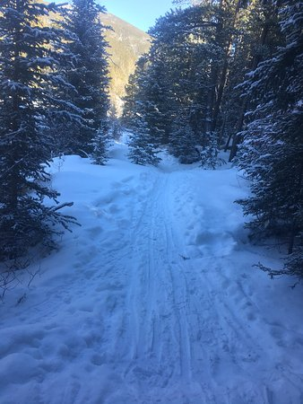 Red Lodge, MT: Silver Run Trails