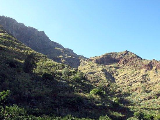 Bodega Los Berrazales