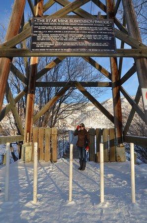 Rosedale Suspension Bridge: Great visit no matter the season.