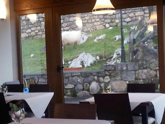 Con, España: Comedor nuevo que se ve todo lo que hay fuera sin pasar frio